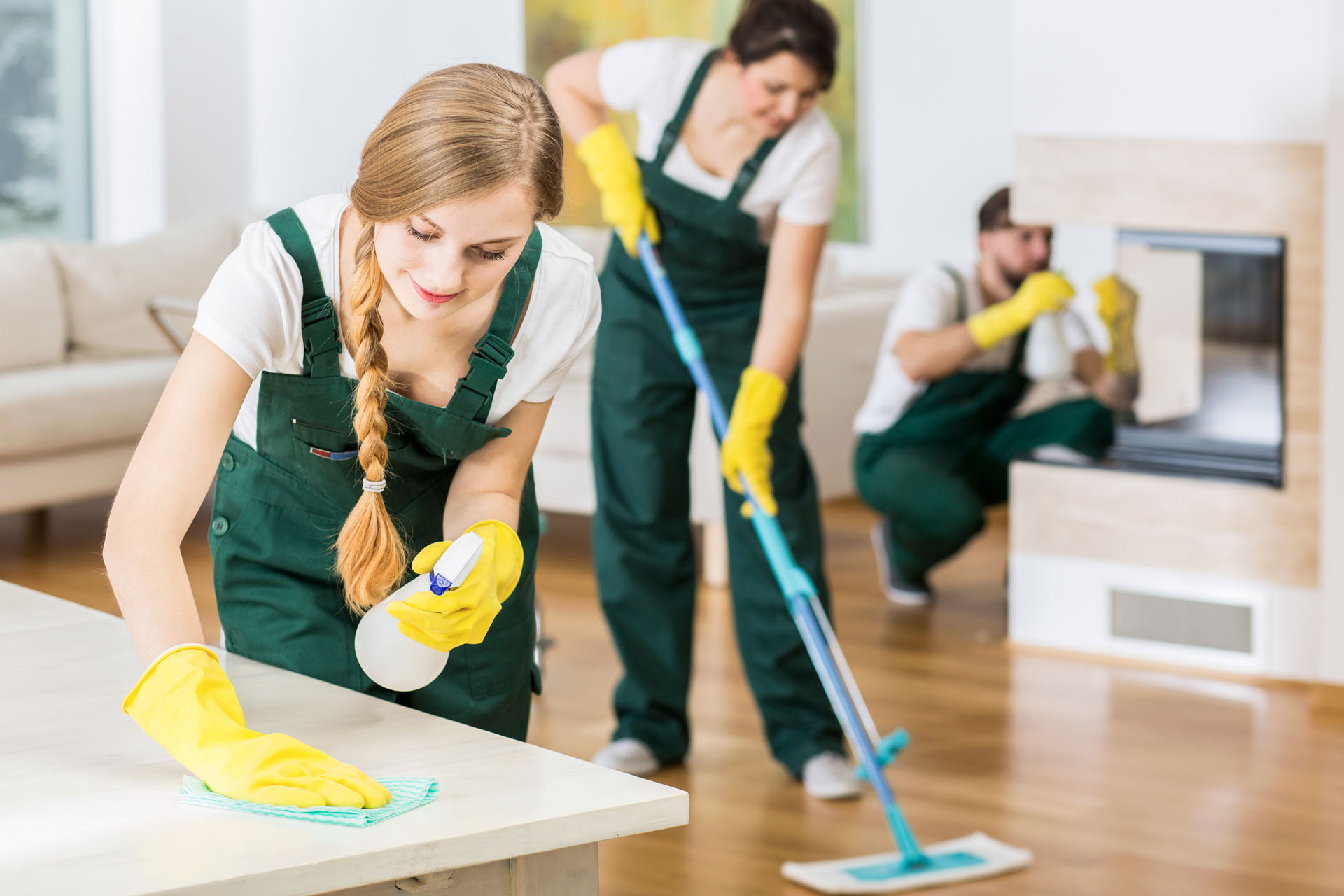 What Are The Items You Require To Know About Apartment Cleaning Support?