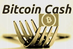 The Significance Of Protecting Bitcoin Cash SV Site